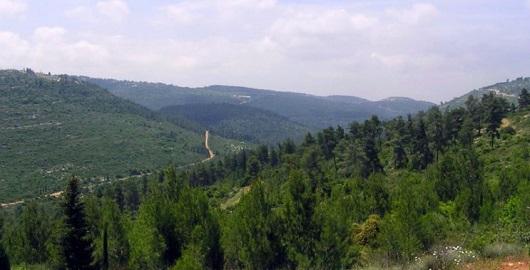Иудейские холмы - одна из самых невероятных достопримечательностей Израиля