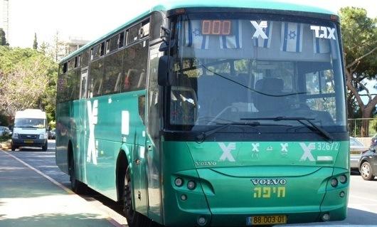 Автобусы компании Егед