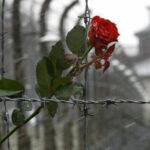 Йом ха-Шоа – день памяти жертв Холокоста