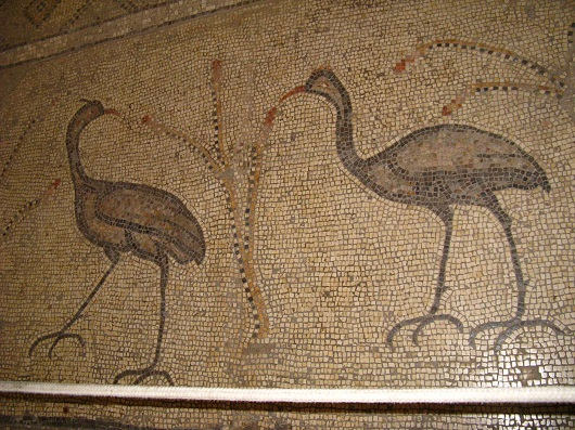 Мозаика  Церкви Умножения Хлебов и Рыб в Табхе
