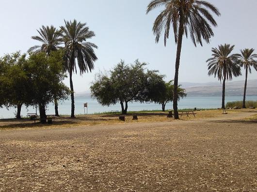 Территория кемпинга Дугит на озере Кинерет