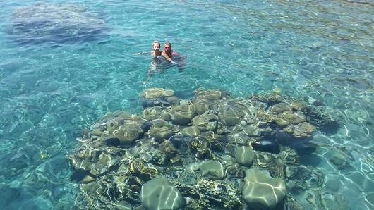 Коралловые рифы на пляже отеля Принцесса (Несиха)