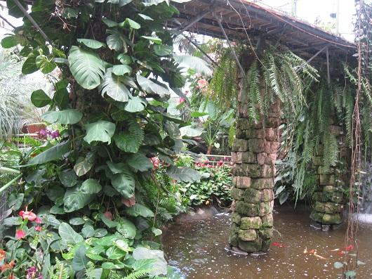 «Парк Утопия» - идеальный мир орхидей и природы